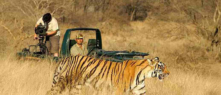 Golden Triangle Ranthambore Tour